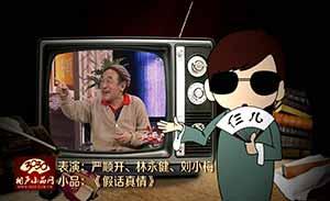 严顺开 林永健 刘小梅 小品《假话真情》清晰版